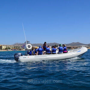 Paseo de avistamiento de ballenas en Los Cabos, Baja California Sur.