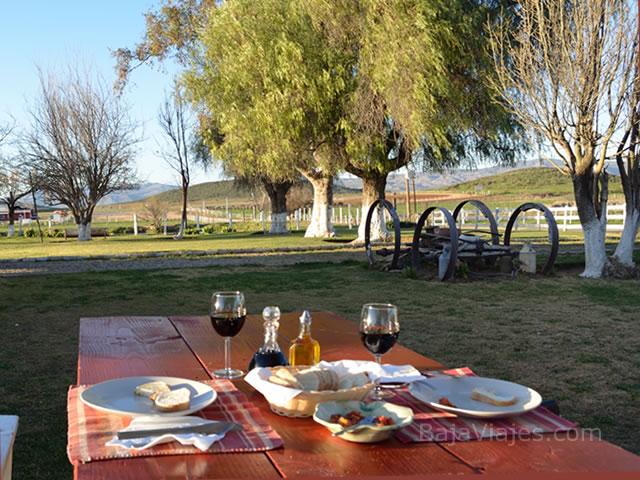 Experiencia gastronómica en la Cava de Quesos, en el Tour al Valle de Ojos Negros.