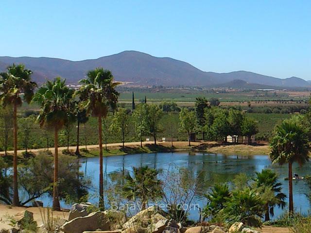 Vista del Valle de Guadalupe, desde Vinícola Monte Xanic.