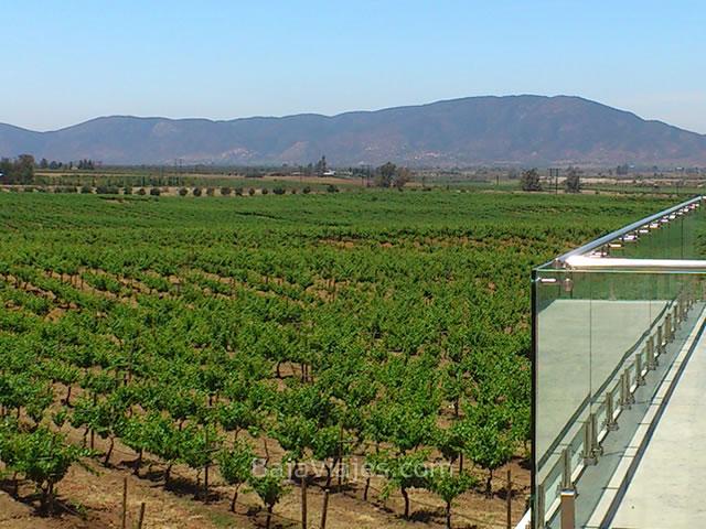 Vista del Valle de Guadalupe, desde el Museo de la Vid y el Vino.