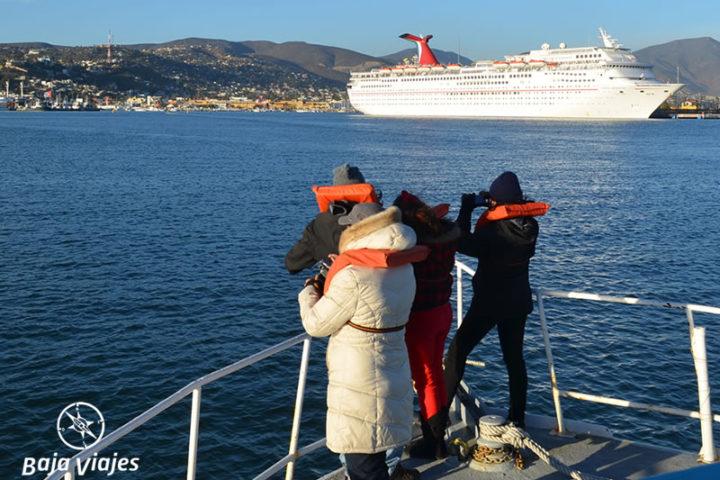 Paseo de Avistamiento de Ballenas en Ensenada
