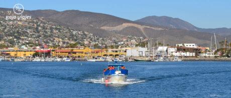 Paseo en barco desde Ensenada