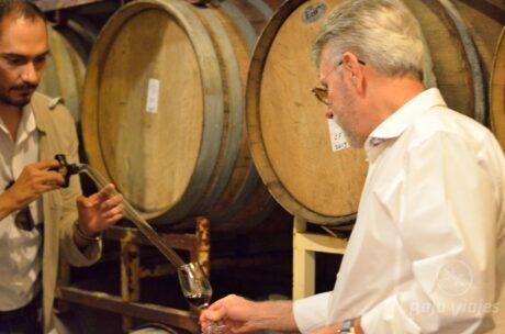 Degustación de vinos en los tours a la Ruta del Vino