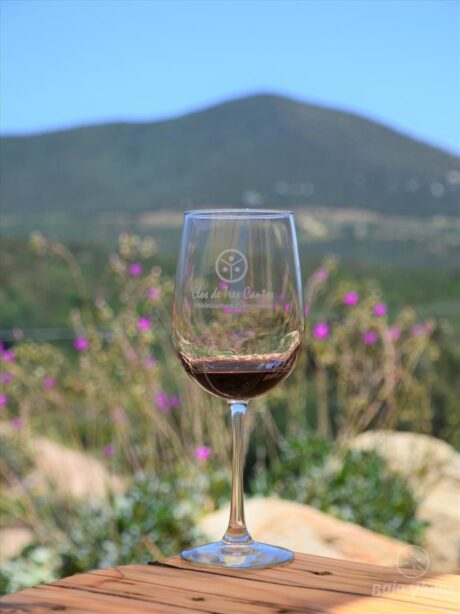 Degustación de Vino en Clos de Tres Cantos